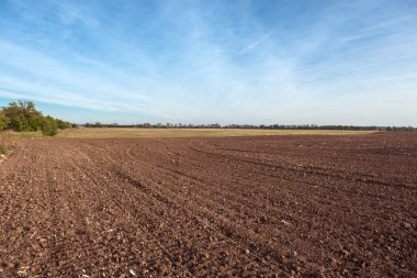 Agricultural field with soil and sky