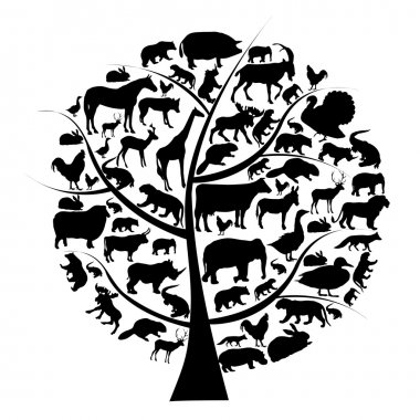 Vector set of animals silhouette on tree. stock vector