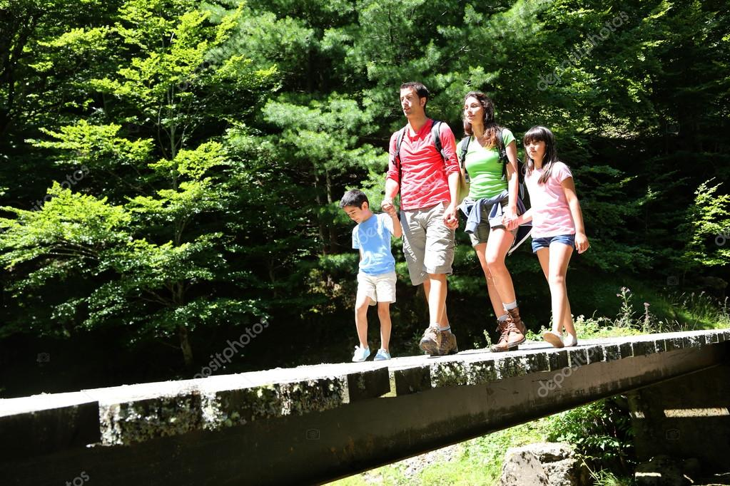 Фотообои Family walking on a bridge in mountain forest
