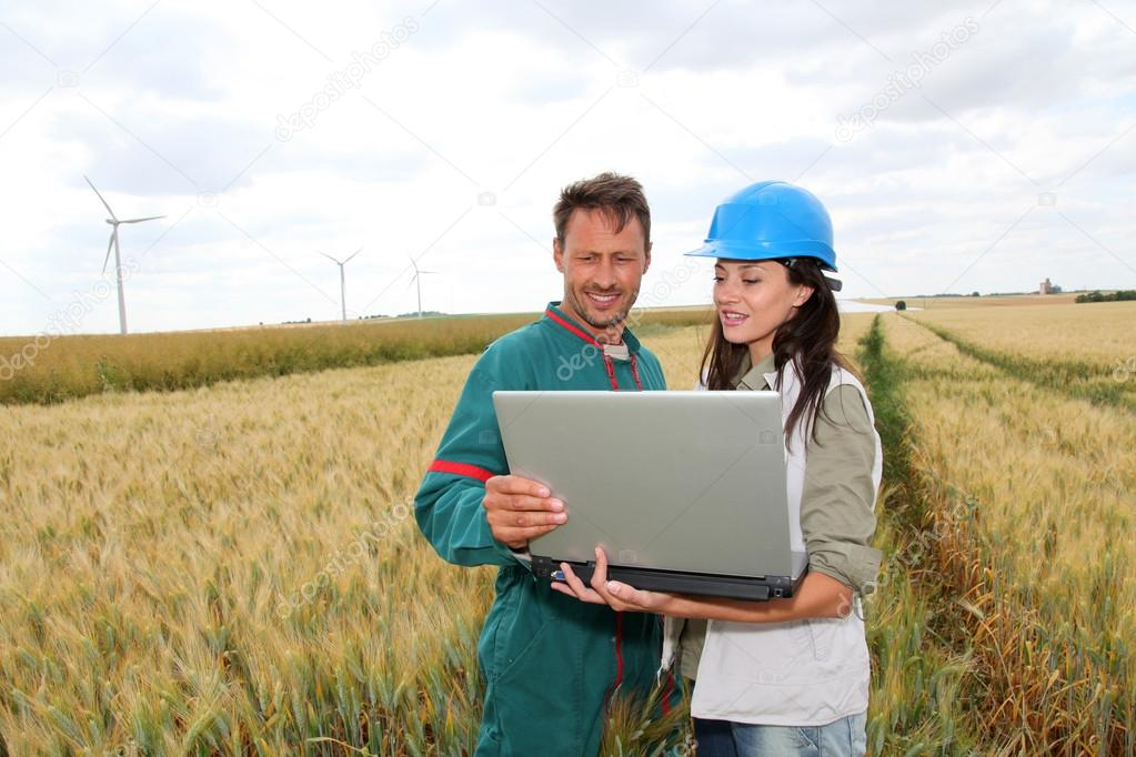 Farmer and engineer in wheat field with wind turbines in background