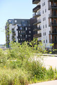 Fotografie architektura v zelené čtvrti