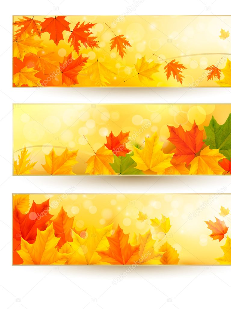 Three autumn banners with colorful leaves in golden frames. Vector illustration.