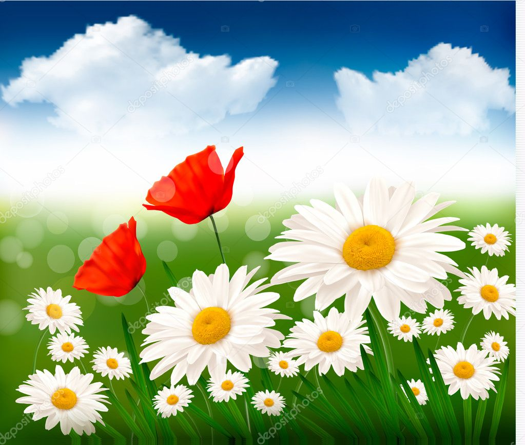 Nature background with beautiful flowers and blue sky. Vector illustration.