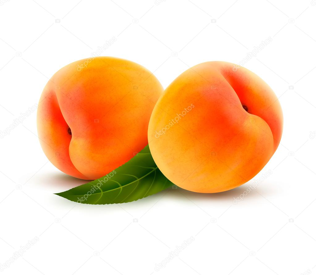 Rpe peach isolated on white. Vector illustration