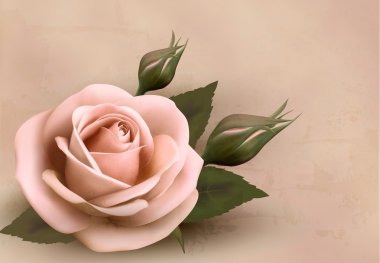 Retro background with beautiful pink rose with buds. Vector illu