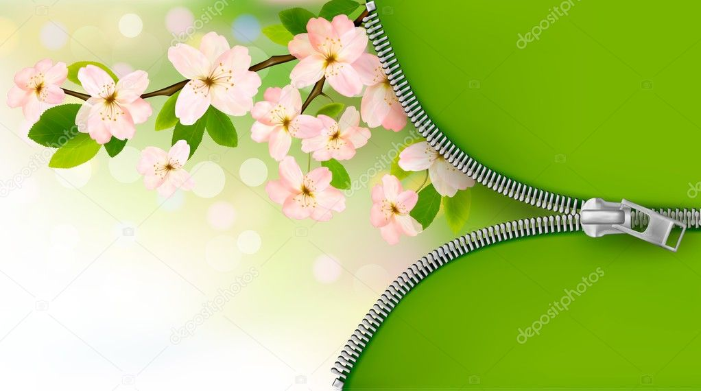 Nature background with blossoming tree brunch and spring flowers