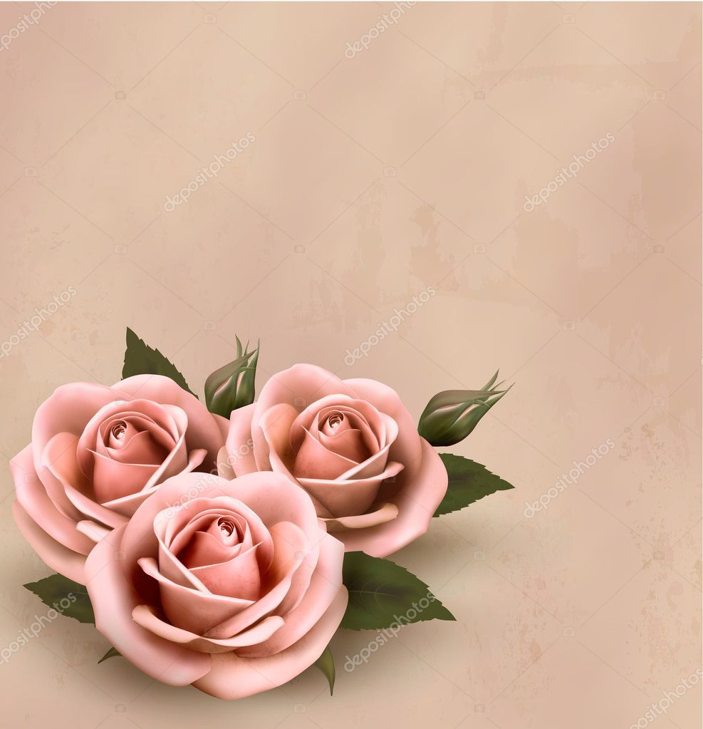 Retro background with beautiful pink roses with buds for Rose color rosa antico