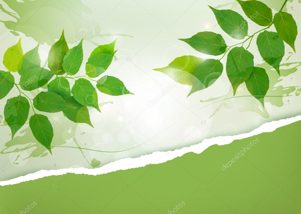 Nature background with green spring leaves and ripped paper. Vec