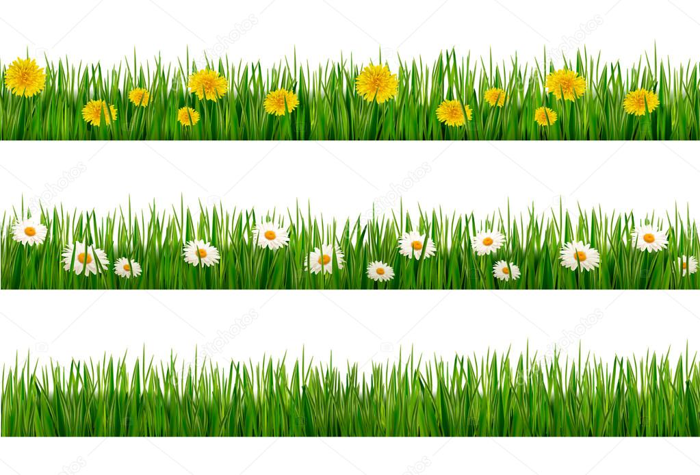 Three nature backgrounds of green grass with dandelions and dais