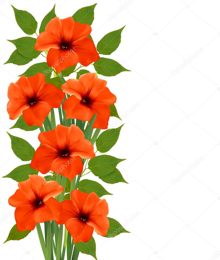 Holiday background with orange beautiful flowers. Vector illustr