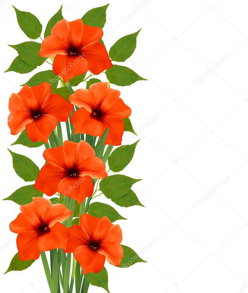 Holiday background with orange beautiful flowers. Vector illustr
