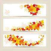 Tři podzimní bannery s barevnými listy vektor