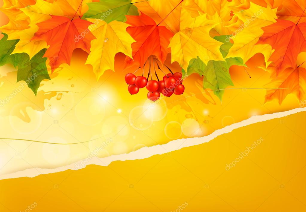 Autumn background with colorful leaves and ripped paper. Vector
