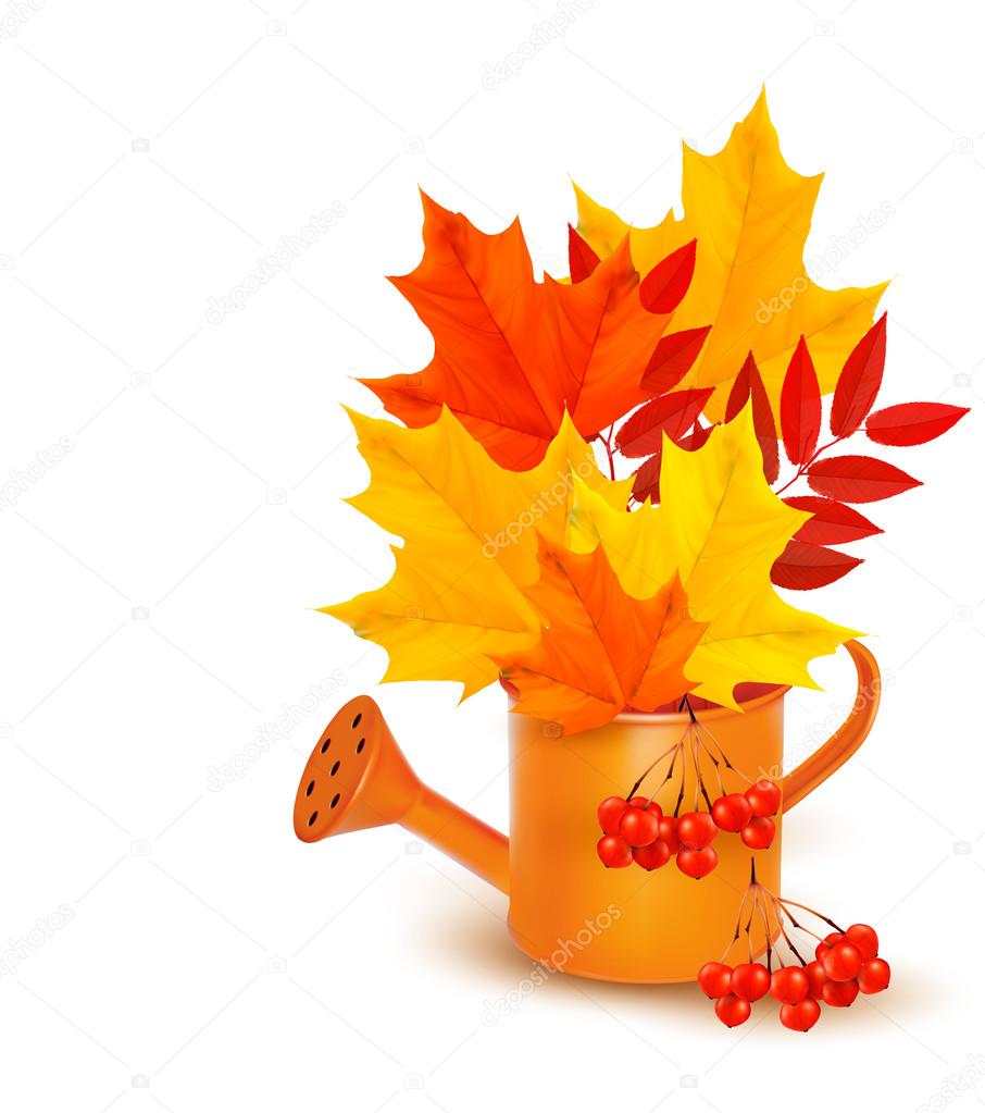 Autumn background with colorful leaves growing in a watering can