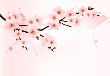 Nature background with blossoming sakura branch. Vector illustration. stock vector