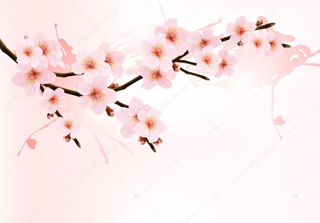 Nature background with blossoming sakura branch. Vector illustra