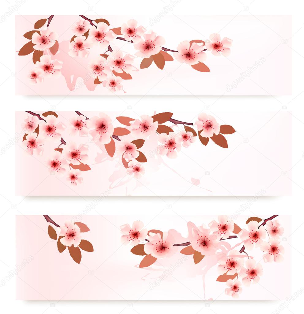 Three spring banners with blossoming branches with pink flowers.
