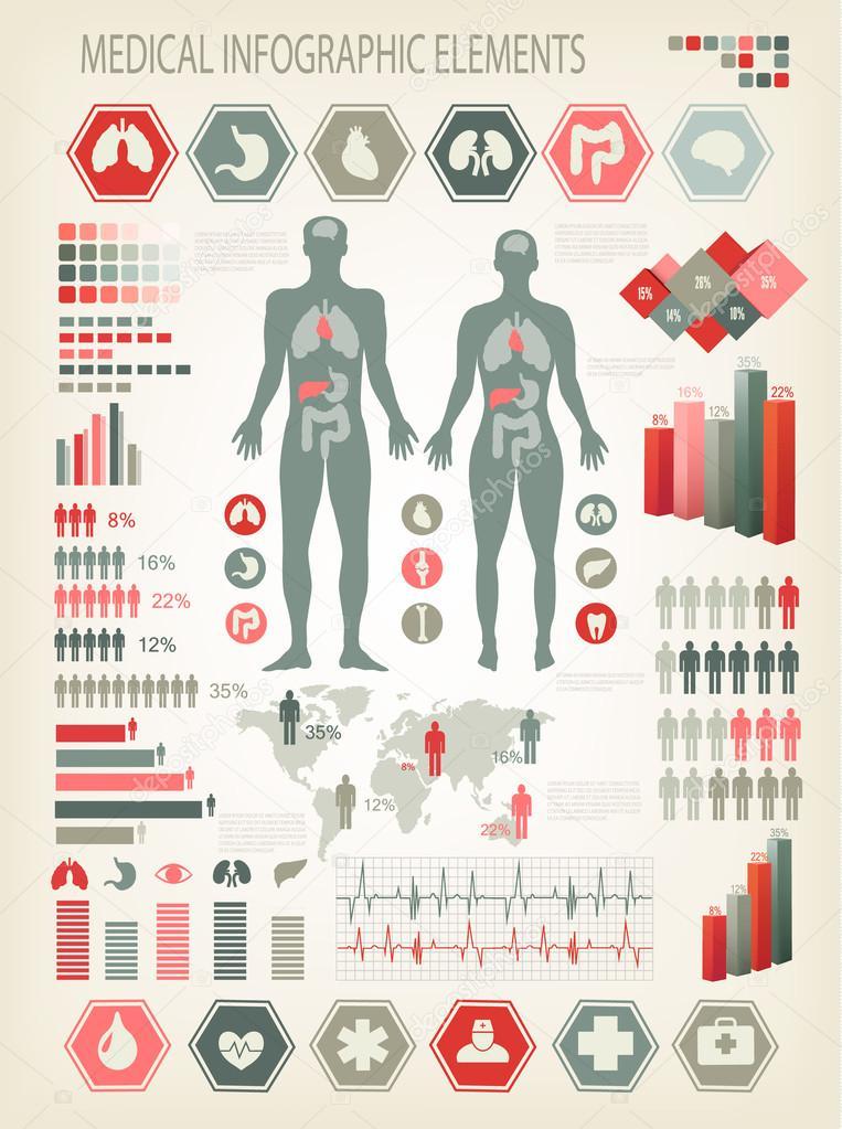 medizinische Infografiken Elemente. menschlichen Körper mit inneren ...
