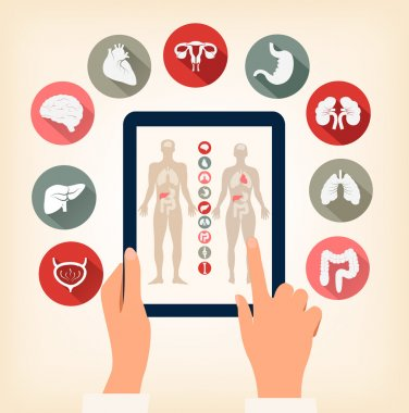 Two hands touching screen of a tablet with human organ icons. Ve