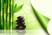 Fotografie Spa background with bamboo and stones. Vector illustration.