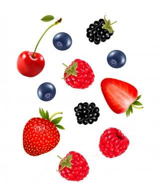 Set of juicy berries. Vector.