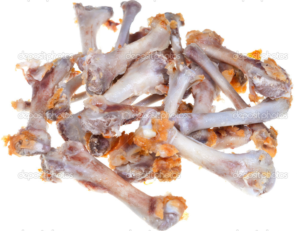 Gnawed Chicken Bones  U2014 Stock Photo  U00a9 Vvoennyy  12566304