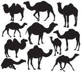 Photo Vector camel silhouette