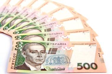 Ukrainian hryvnia.