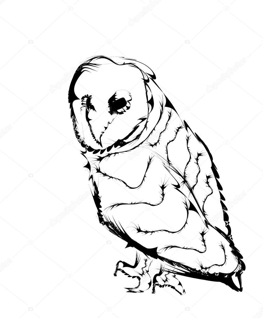 Chouette Dessin Stylisé oiseau chouette stylisée comme dessin au crayon — image vectorielle