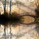 Fotografie podzimní park