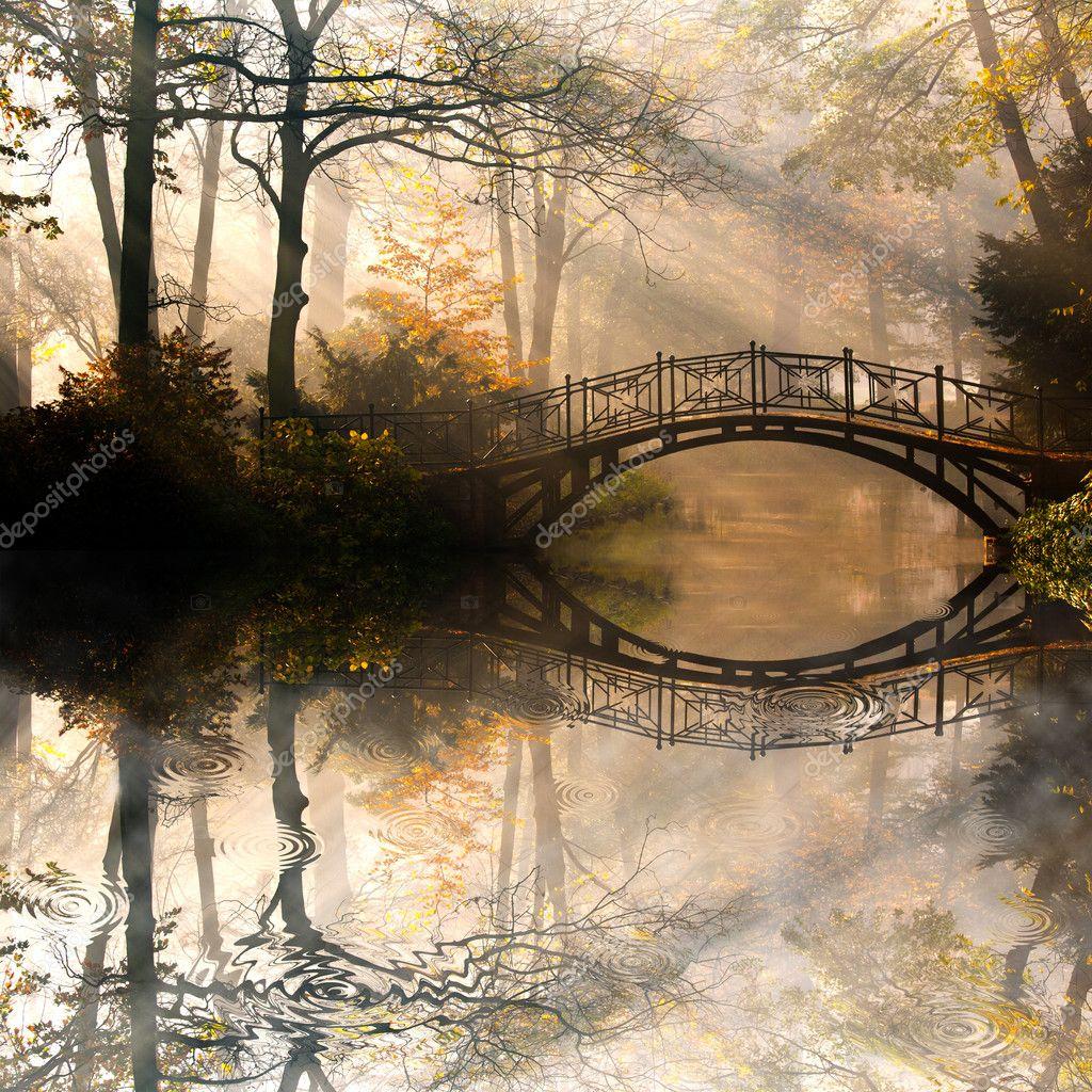 Фотообои Autumn park