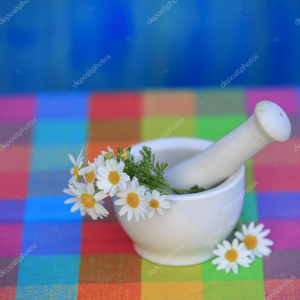 Chamomile herbs in a mortar, Alternative medicine, healthy cosme