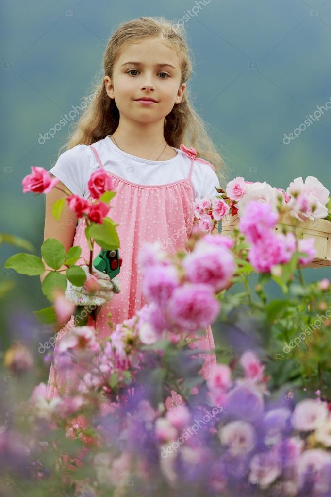 jardín de rosas - hermosa chica cortando rosas en el jardín — Foto ...
