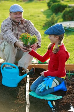 Gardening, planting - young girl helping father in the garden