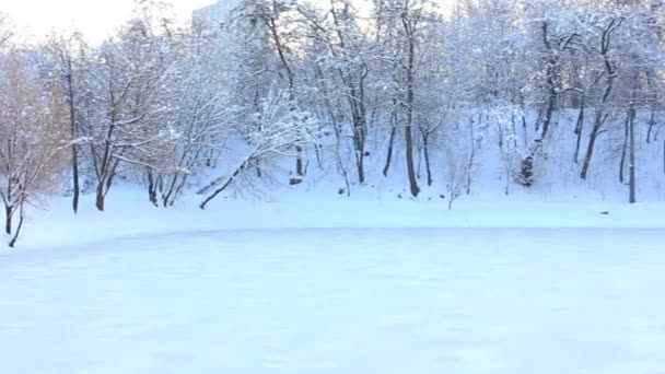 Panorama of the frozen lake in the winter