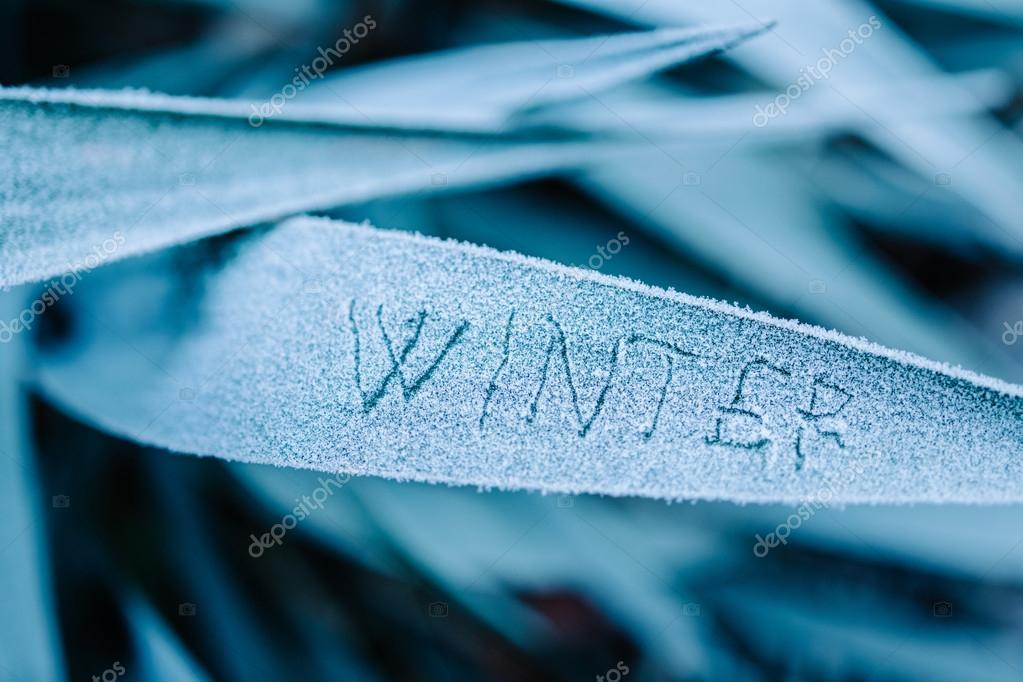 Winter written on frozen