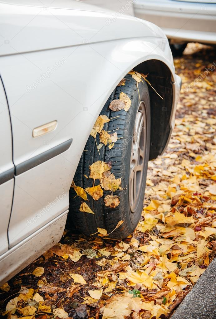 Car winter tire in autumn