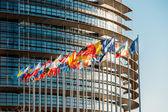 čelní vlajky Evropského parlamentu