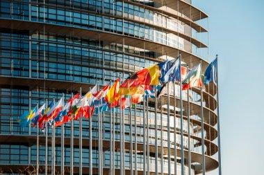 European Parliament frontal flags