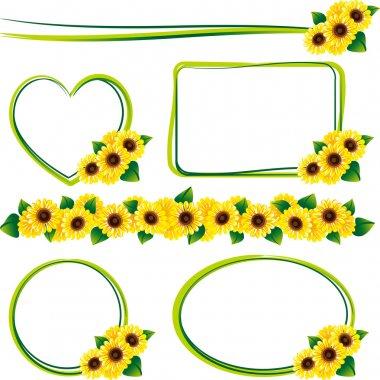 Frame of the sunflower