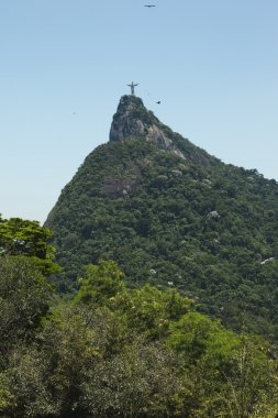 Christ the Redeemer statue atop Tijuca Forest