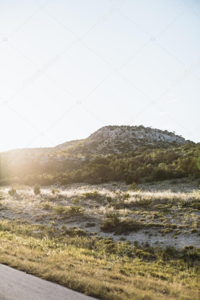 field of trees and hills in countryside Texas