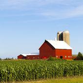 Fotografie farma krajina ráno