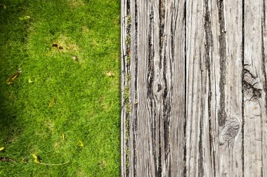 Porch Background