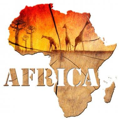 Africa Map Wooden Illustration