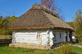 Fotografia antica capanna con tetto di paglia