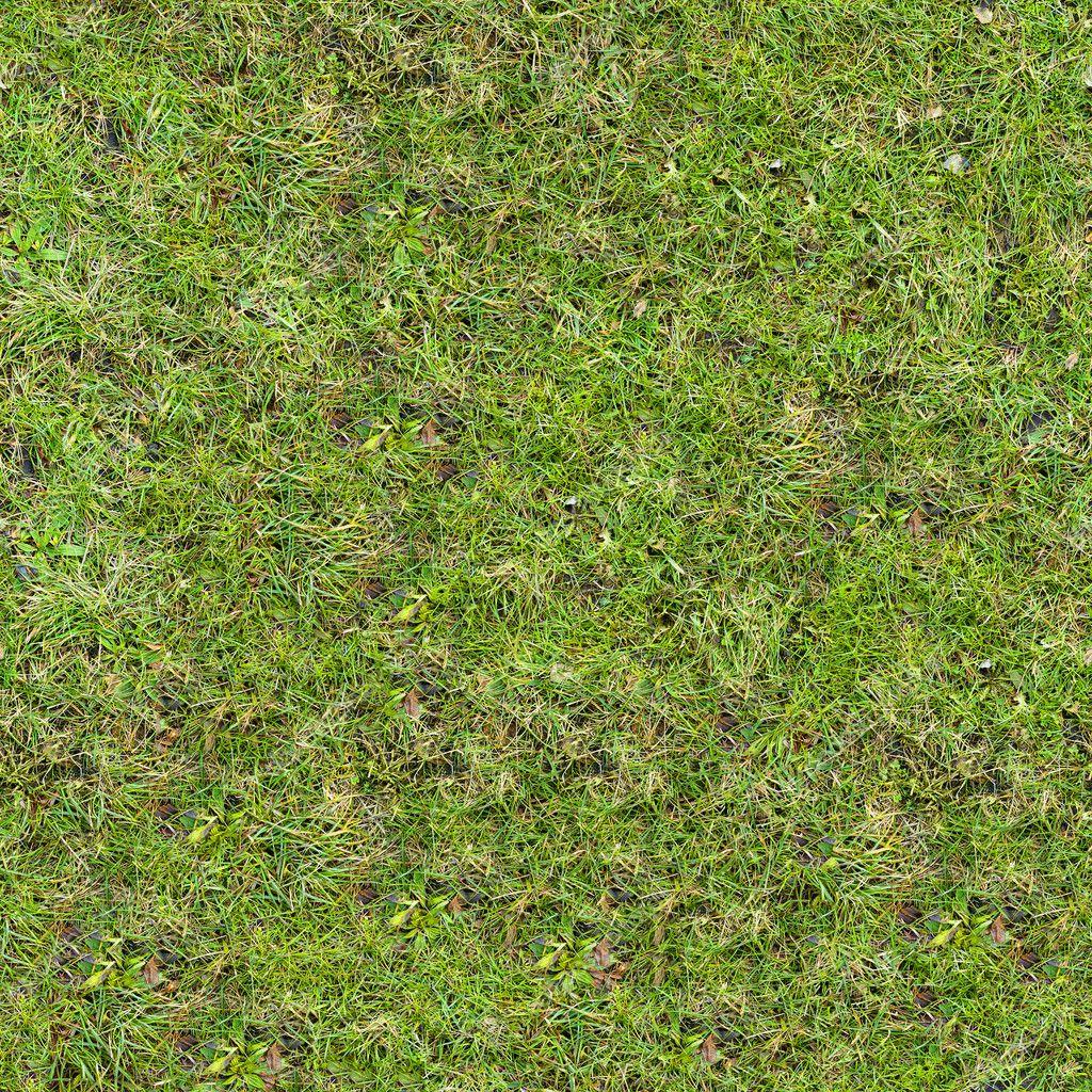 Grass Texture. — Stock Photo © tashatuvango #21295473