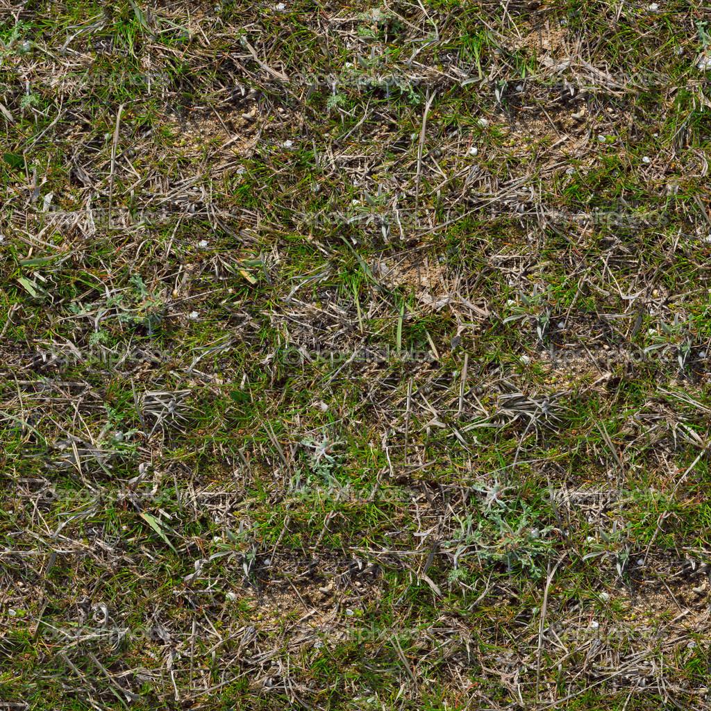 dirt grass texture seamless. Grass Seamless Tileable Texture. \u2014 Photo By Tashatuvango Dirt Texture R