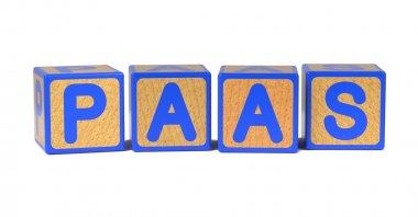 PAAS - Colored Childrens Alphabet Blocks.