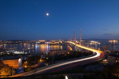Bridge in Vladivostok